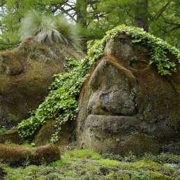 Island - Gnome & Trolle