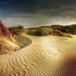 Dänemark - Dünen