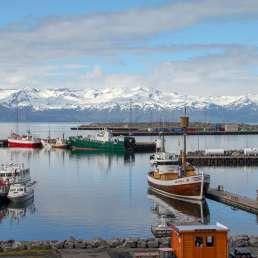 Island - Hafen in Husavik