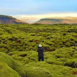 Lavafeld Eldhraun in Island