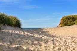 Dänemark -Nordseedünen