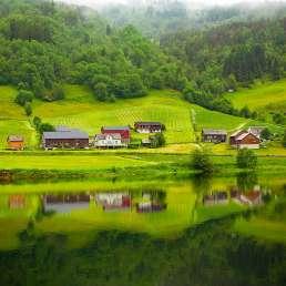 Fjordlandschaft in grün