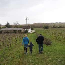 Weinhangführung mit Winzer im Bordeaux