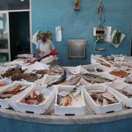 marktfrischer Fisch in Terracina