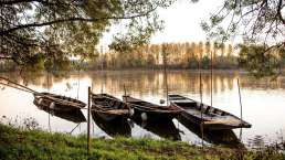 Stille Momente inmitten der Natur an der Loire