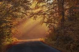 Herbstromantik unterwegs