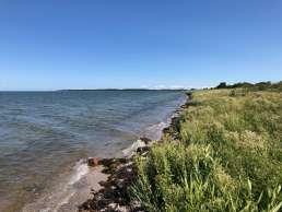 Ostseeküste auf Fyn in Dänemark