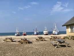 Natur-Camping Blogpost - Fliegende Boote am Thorup Strand in Dänemark