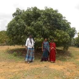 Stadt Land Camp - CO2 Kompensation - Aufforstungsprojekt Bagepalli in Indien 2