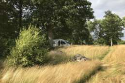 Camping am Bolmen See