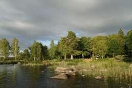 """Idylle pur auf dem Natur-Campingplatz Getnö Gard im """"Lake Åsnen Resort"""""""
