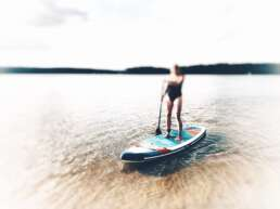 Stand-Up-Paddle - (40€/Anmietung)